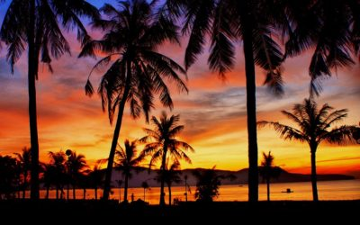 Take it Easy Honeymoon In Quy Nhon Beach 7 Days