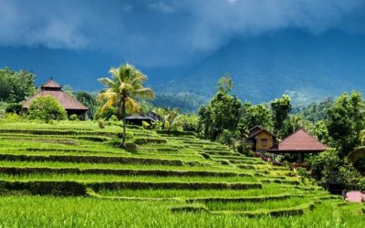 Balinese Culture and Nature 9 Days